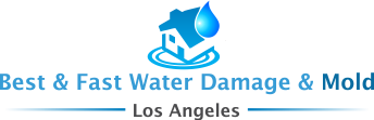 Best & Fast Water Damage & Mold Los Angeles